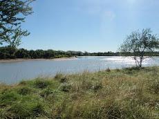 Albert River