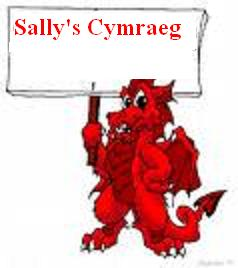 Sally's Cymraeg