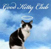 I'm proud to be a member of @Rumblepurrs Good Kitty Club