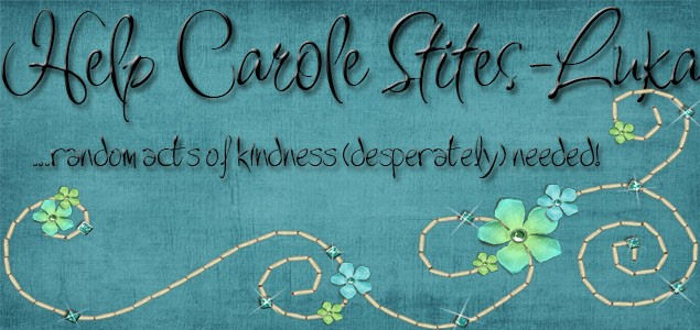 Help Carole Stites-Luka