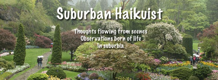 Suburban Haikuist