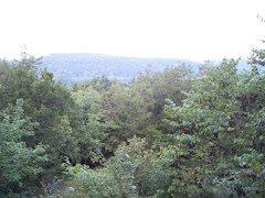 Beautiful view from Dennis and Phyllis's porch