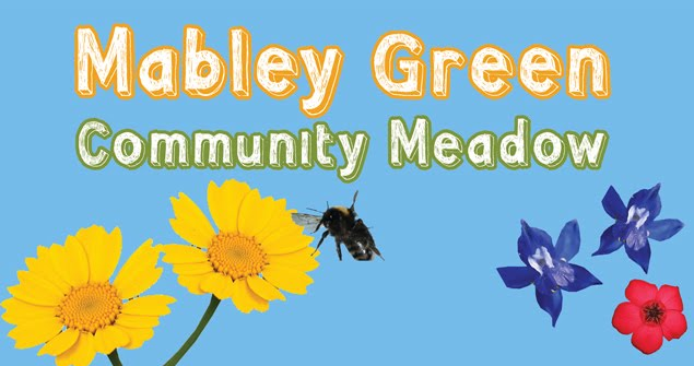 Mabley Green Meadow