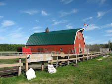 Ravenheart Big Red Barn