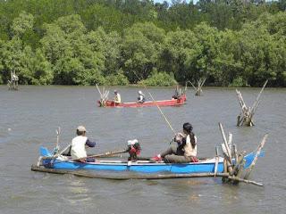 blok bedul wisata mangrove banyuwangi