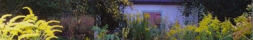 Garten Eins