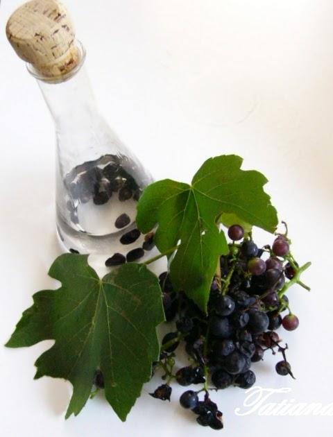 Peccati di gola e di amicizia grappa all 39 uva fragola for Uva fragola in vaso