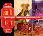 Sink Trap, the first Georgiana Neverall Mystery!