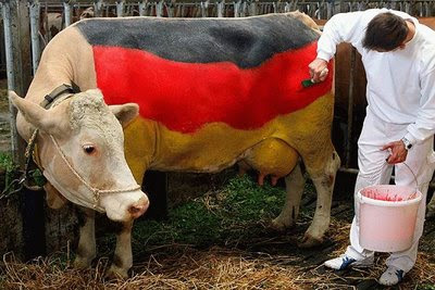funny german cow photo