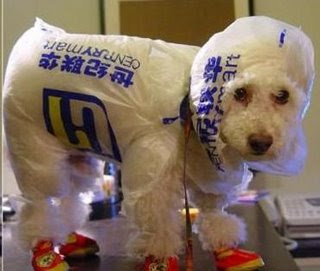 plastic raincoat for dogs funny