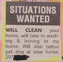 funny situations wanted wash, clean tattoo dog at your home