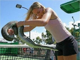 funny snake photos attacking girl on tennis court picture