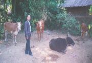 Farm Mojokerto