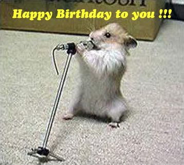 happy birthday jazzy birthday hamster