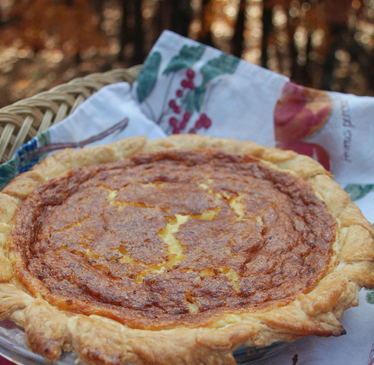 Old-Fashioned Chicken Pot Pie Recipe 21