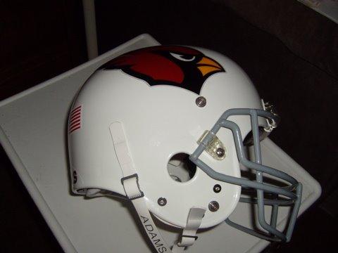 [Cardinal+helmet]