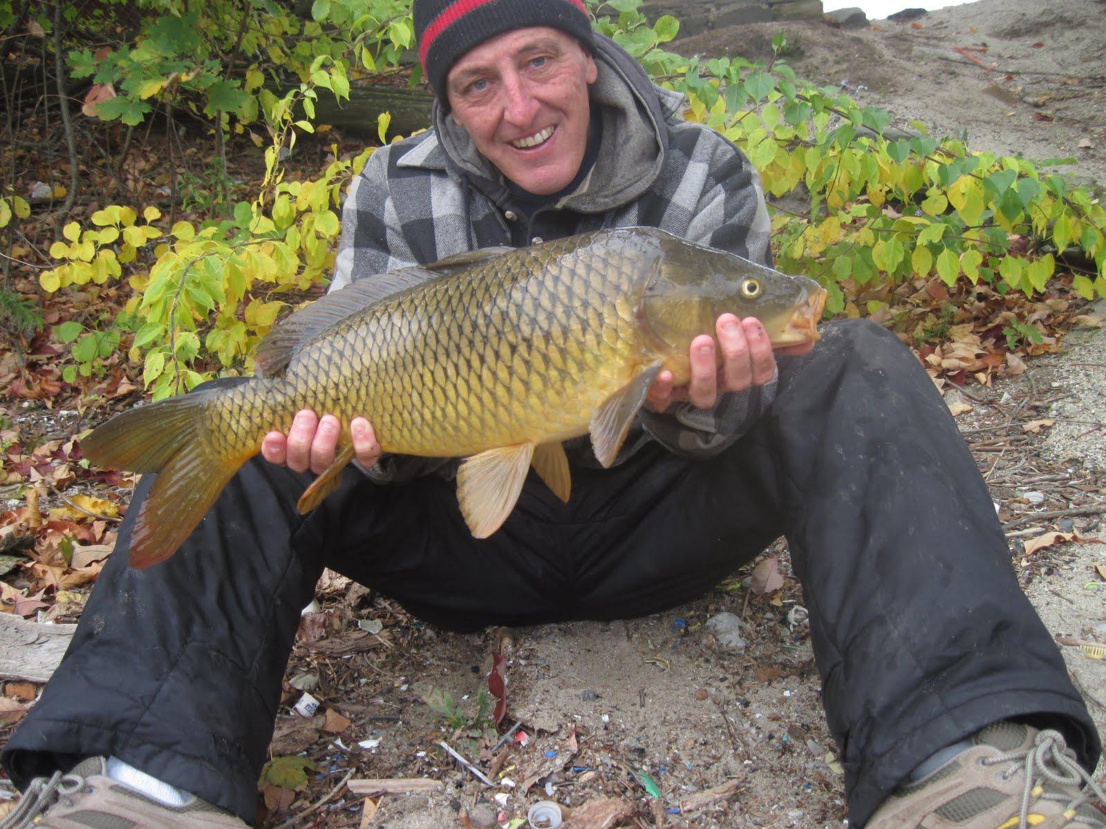 Rhode island carp fishing ri carp fishing still going for Fishing in rhode island