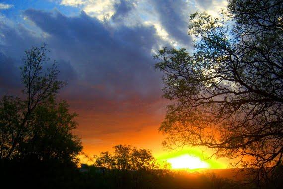 Sun Gazing - Hira Ratan. Beneficios Mirando al Sol
