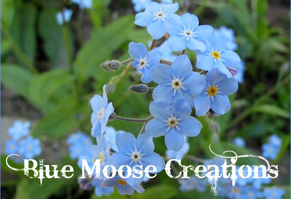 Blue Moose Creations