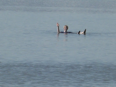 Cindys Adventures Swimming In The Great Salt Lake