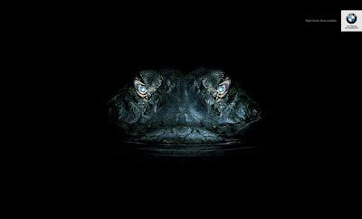 BMW night vision alligator