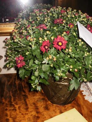 Lockryd blommor