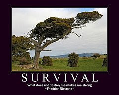 survival Survival is the Name of the Game