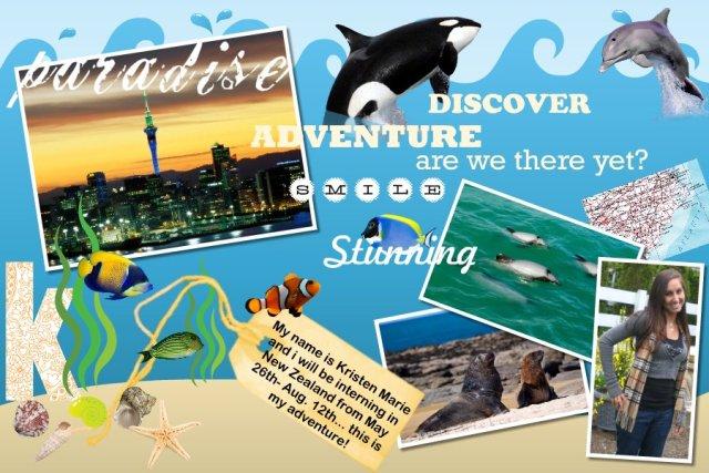New Zealand Adventure's!