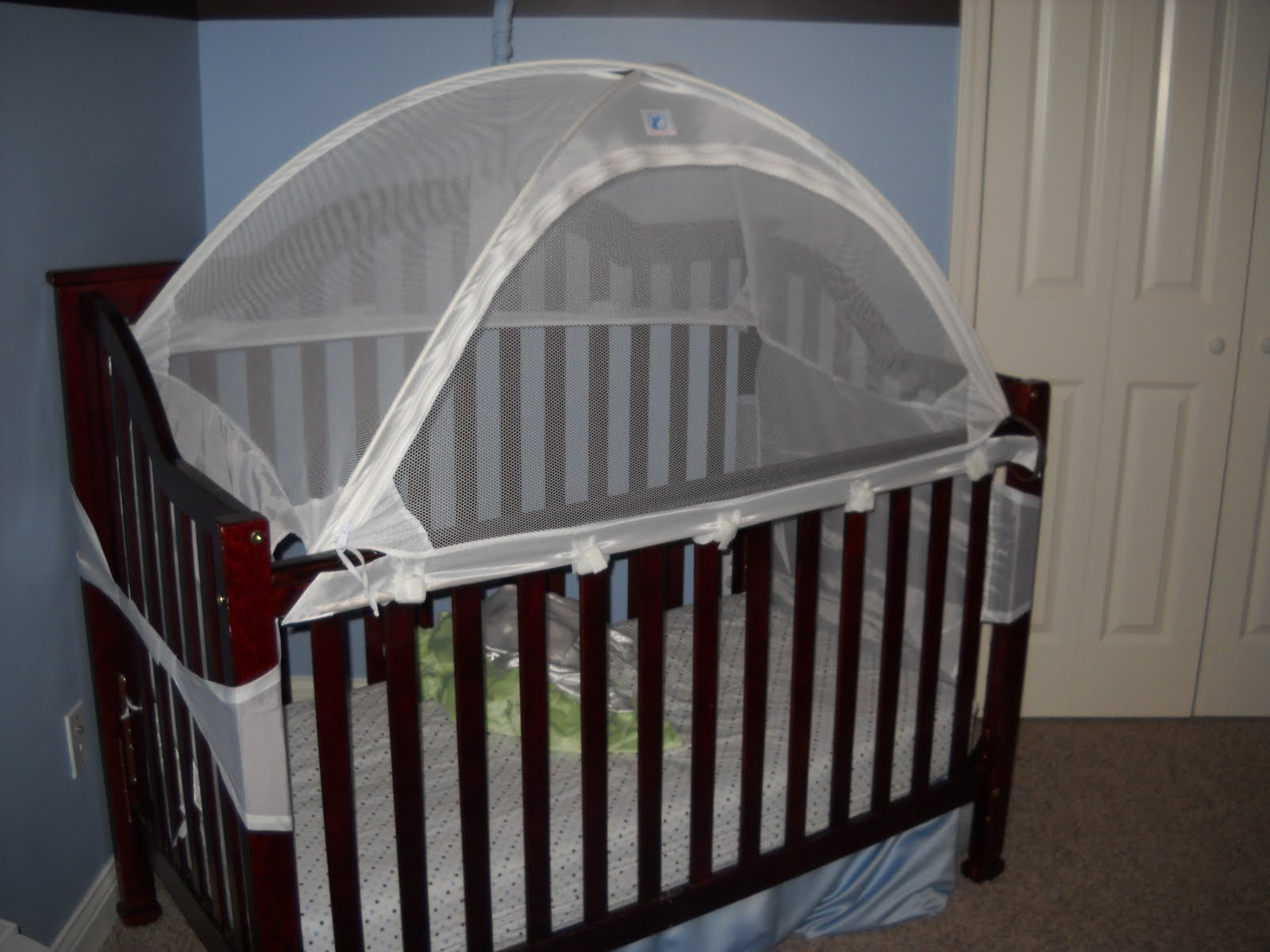 Crib Tent Or Toddler Bed Creative Ideas Of Baby Cribs
