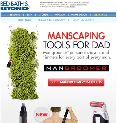 Click to view this June 1, 2010 Bed Bath & Beyond email full-sized