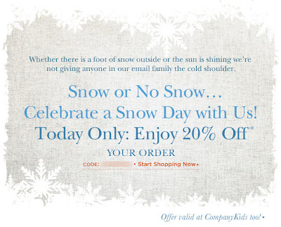 Click to view this Jan. 12, 2011 Company Store email full-sized