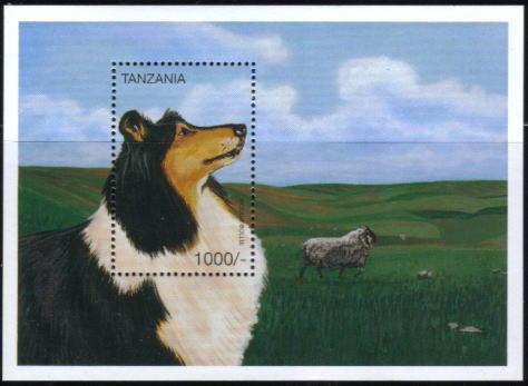 1996年タンザニア連合共和国 ラフ・コリーの切手シート