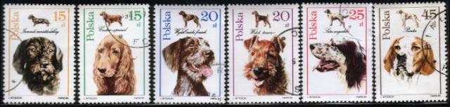 1989年ポーランド共和国 ダックスフンド コッカー・スパニエル チェック・ポインター(チェスキー・フォーセク)  エアデール・テリア イングリッシュ・セター ポインターの切手