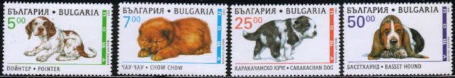 1997年ブルガリア共和国 ポインター チャウ・チャウ カラカハン・ドッグ バセット・ハウンドの子犬の切手