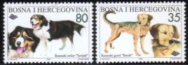 1996年ボスニア・ヘルツェゴビナ共和国 ボスニアン・ラフコーテッド・ハウンド バルカン・ハウンドの切手