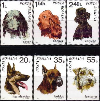 1971年ルーマニア イングリッシュ・セター コッカー・スパニエル プードル ジャーマン・シェパード ブルドッグ フォックス・テリアの切手