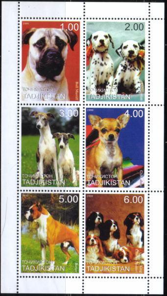 1999年タジキスタン共和国 マスティフ ダルメシアン ウィペット チワワ ボクサー キャバリア・キング・チャールズ・スパニエルの切手シート
