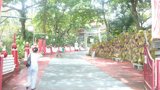 pathway from gate of Haw Par Villa