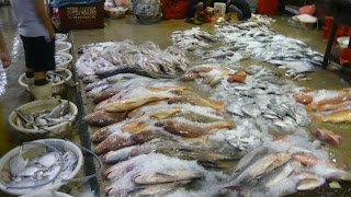 array of fish displayed for sales