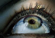 Dale de comer a la mosca en mi ojo