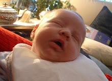 mio nipote satollo
