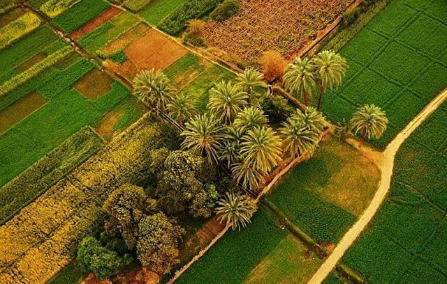 الطبيعة في مصر صور نادرة جدا