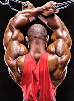 Bodybuilder Wallpapers 0103
