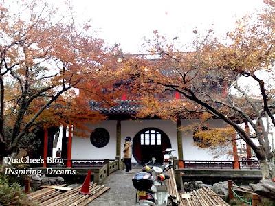 hangzhou westlake autumn leaves