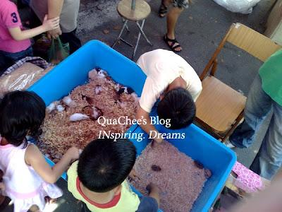gaya market pet hamster