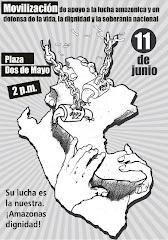 JUEVES 11 DE JUNIO: MOVILIZACIÓN NACIONAL
