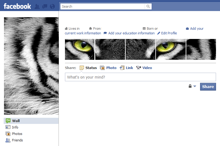 Cool Facebook Profile: 18 - White Tiger Eyes - Cool Facebook Profile