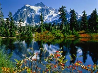 El mejor lugar para vivir 400_1199254342_el-paraiso