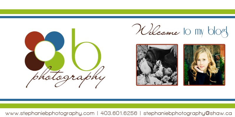 Stephanie B Photography