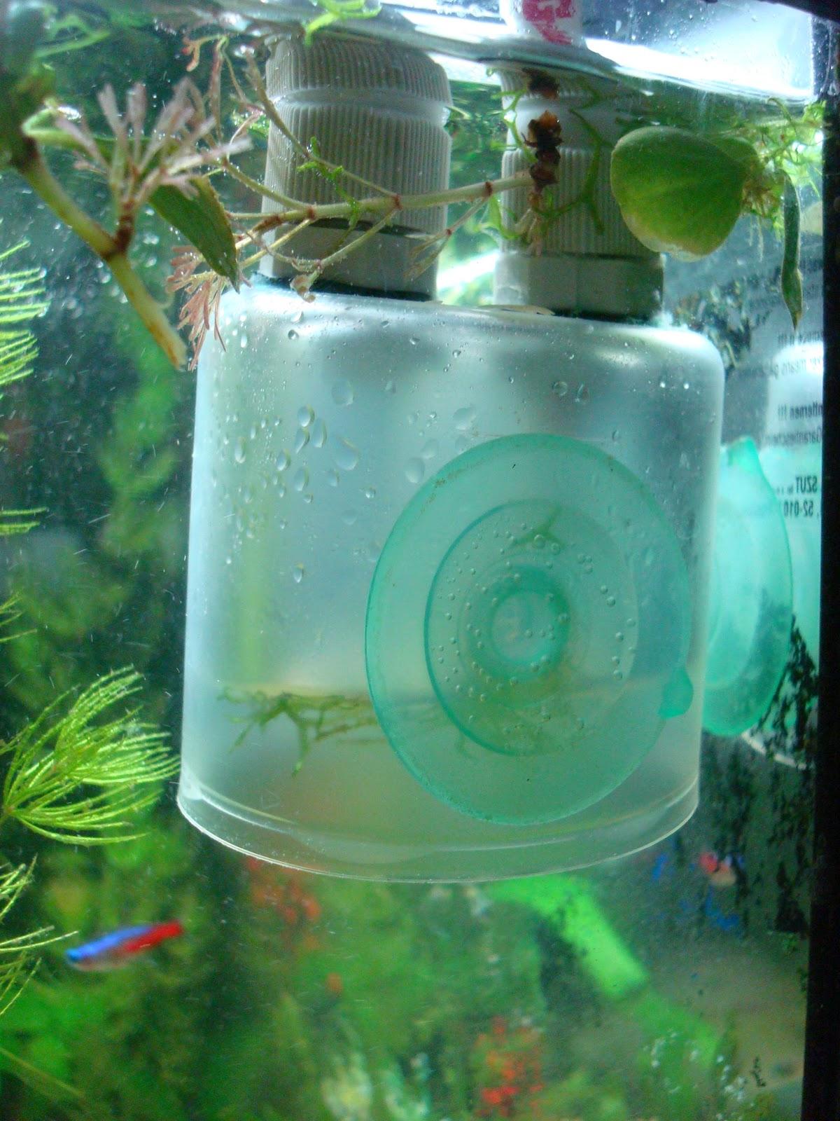 Колокол со2 для аквариума своими руками 39
